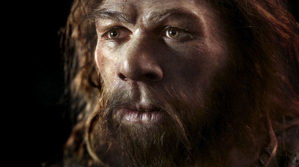 neanderthals dental tartar