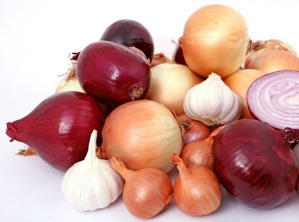 onions-for-gums